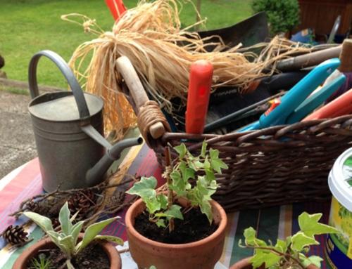 Gartenarbeit ist gesund! Aber auch nicht ungefährlich!